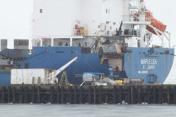 maple-lea-15E1E1BA6-D35A-3453-714F-F8C80074B89E.jpg