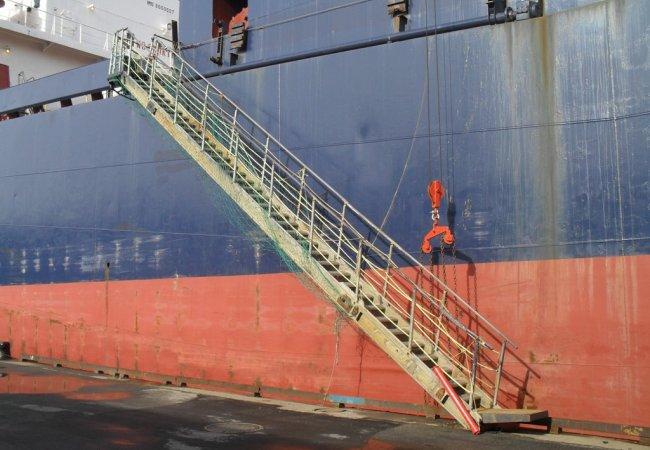 Gangway, boarding ladder